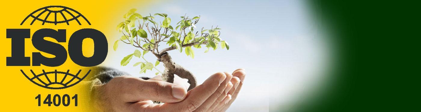 Система экологического менеджмента